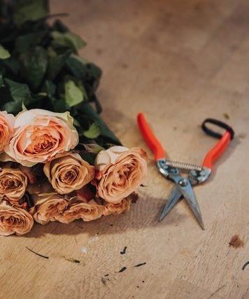 bellas flores cali